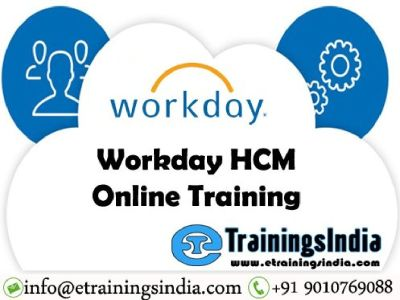 Workday Techno-Functional Online Training with Tenant Access