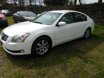 2005 Nissan Maxima 3.5 SE (PEARL WHITE)