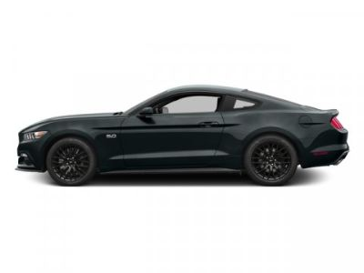 2016 Ford Mustang GT (Guard Metallic)