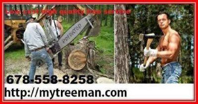 My Treeman Tree Service Tree Care 678-558-8258 Visit mytreeman.com