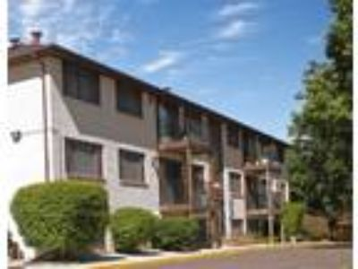 Basswood Apartments - Large Two BR Two BA