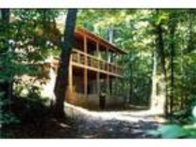 Mountain Cabin at Fightingtown Creek in Blue Ridge: Low Intro Rates! - Cabin