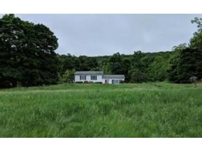 3 Bed 2 Bath Foreclosure Property in Lagrangeville, NY 12540 - Bloomer Rd