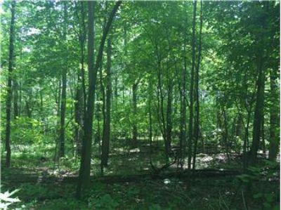 $160,000, TBD Taylor Mountain Road 3 - Ph. 434-220-0256