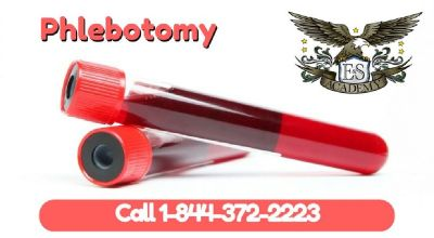 Become a Phlebotomist with just 4 weeks of training!