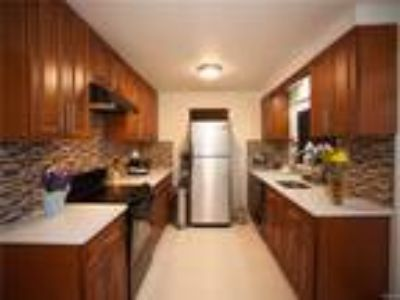 Real Estate Rental - Four BR, Two BA Contemporary