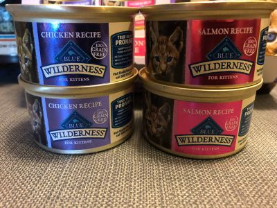 Kitten Food 4 cans