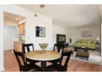 Steeplechase Apartments - Two BR, One BA 1,070 sq. ft.