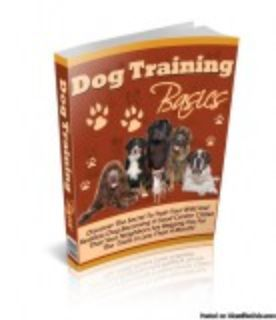 Are you looking for the quick and easy ways to train your dog