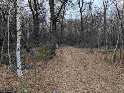 Lot 2 Lake George Boulevard Oak Grove, 10 acre lot with soil