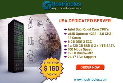 $160  USA Dedicated Server plans of Hostripples with Best Features.