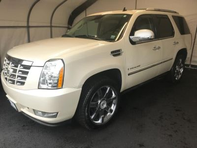 2008 Cadillac Escalade Base (White)