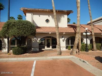 3 Bed 2 Bath Foreclosure Property in Sun City, AZ 85373 - N 99th Ave Unit 228
