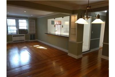 Beautiful renovated modern huge 1-bedroom condo