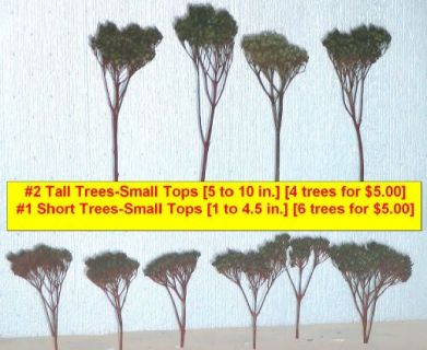 Model Railroad Trees & Flying Scot Train