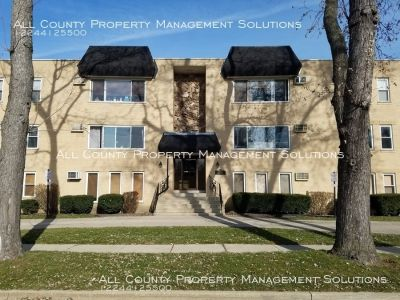 Nicely renovated 2 bedroom condo in downtown Des Plaines location