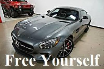 Unlimited Access to Dealer only Auto Auctions Buy cars at 30 Cost Be your own boss