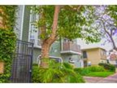 Coronado Ave Apartments - Two BR/Two Full BA/Washer & Dryer