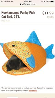 Fish Cat bed with foam bottom