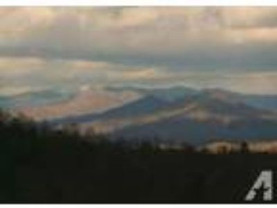 $650 / 3 BR - Fantastic cabins in the Smoky Mtns.What a view