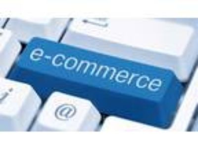 Ecommerce Business Online Marketing income