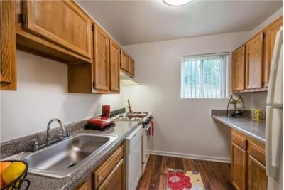 1 bedroom Apartment - Tucked away in a plush wooded setting. Cat OK!