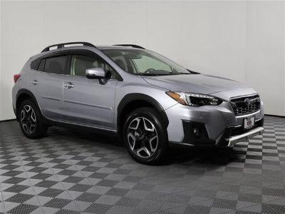 2019 Subaru Crosstrek (Ice Silver Metallic)