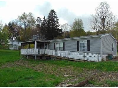 2 Bed 1 Bath Foreclosure Property in Hastings, PA 16646 - Millers St