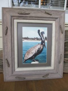 Framed and Matted Pelican PhotographPicture