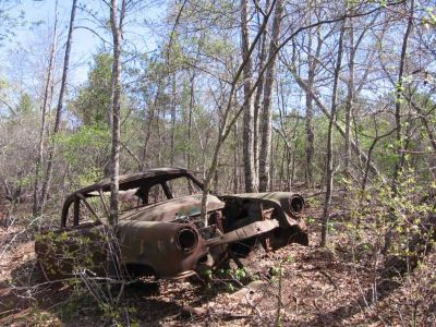 WTB Old, Classic, Antique, Rare Cars or Trucks (Texas) (Texas)