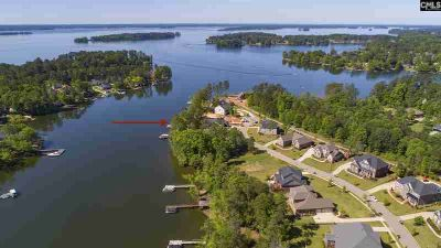 216 Brookridge Drive Chapin Four BR, Lakefront, private dock