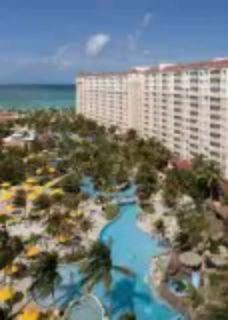 Aruba Surf Club for rent