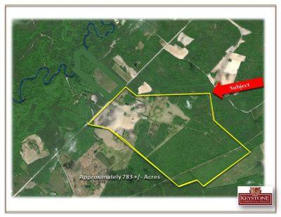 Hinson Tract-783 Acre Farm Tract-Nichols, SC- For Sale