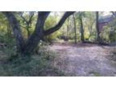 Land for Sale by owner in Webster, FL