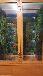 Arboreal reptile enclosure