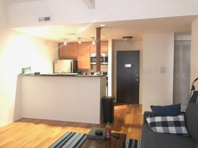 Exposed Brick, High Ceilings Heart of Lincoln Park 1bd - SS Appliances, Central HVAC, Hardwood, Dishwasher ++