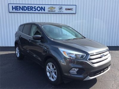 2017 Ford Escape (MAGNETIC METALLIC)