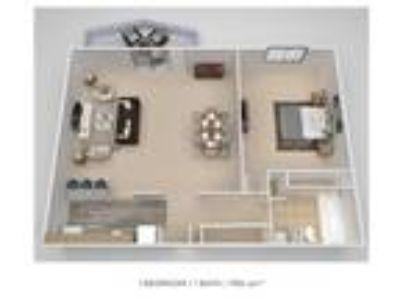 Colonials Apartment Homes - 1 BR Junior