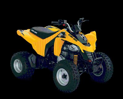 2016 Can-Am DS 250 ATV Sport Island Park, ID