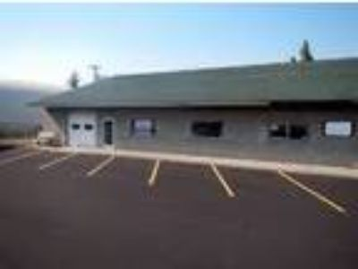 Retail-Commercial for Lease: Retail/Office Suite
