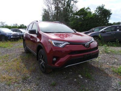 2018 Toyota RAV4 SE (Ruby Flare Pearl)