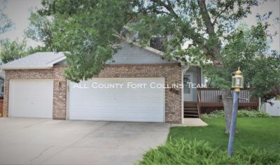 Immaculate Loveland Gem! (more pictures coming soon)