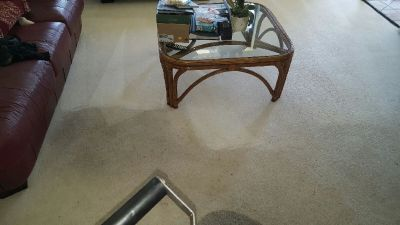 Professional - Carpet Cleaning in West Palm Beach