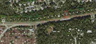 6461 W Oak Park Boulevard Homosassa, Nice Sugarmill Woods