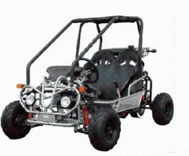110cc Double Seat Kids Go Karts