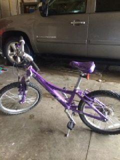 $75 Girls MT 60 Treck Bike