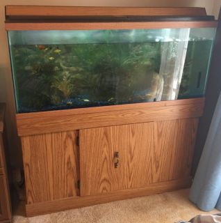 55 gallon fish tank & stand