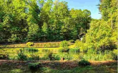Minnehaha Trail 9.15 Blue Ridge, Looking for your dream home