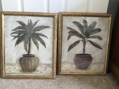 2 Palm Pictures