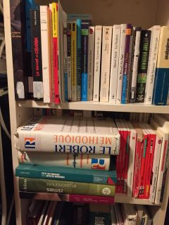 60+ French books